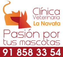 clinica veterinaria la navata