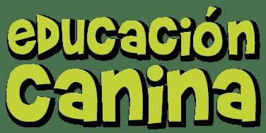 curso-obediencia-básica-canina-galapagar