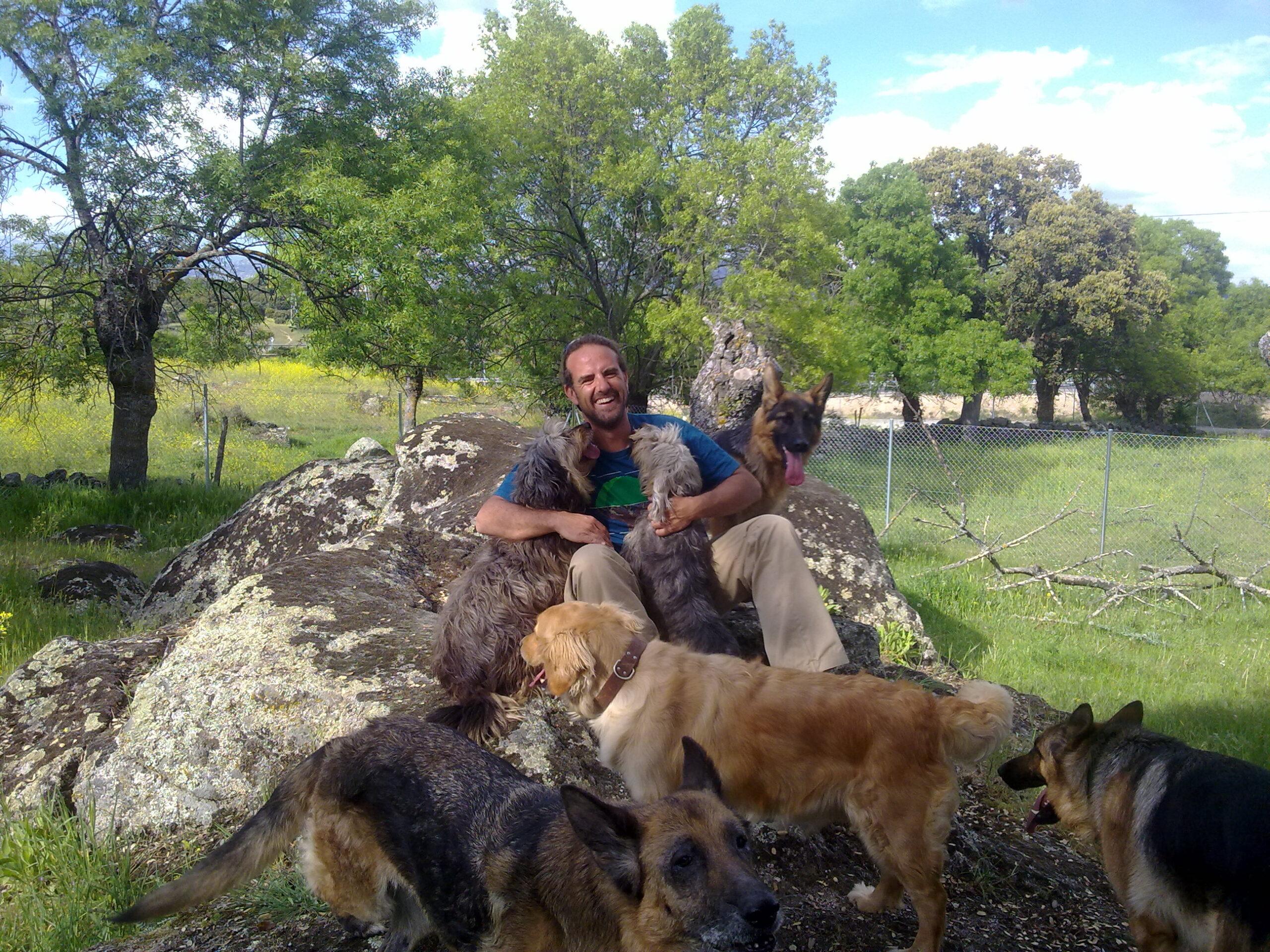 adiestrador canino en Galapagar, Collado Villalba, Torrelodones, Colmenarejo, Las Rozas de Madrid y Majadahonda