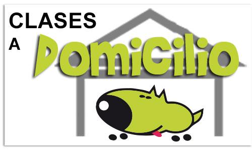 cartel-clases-educacion-canina-domicilio-la-tejera