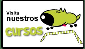 cartel-visita-nuestros-cursos-aducacion-canina-madrid