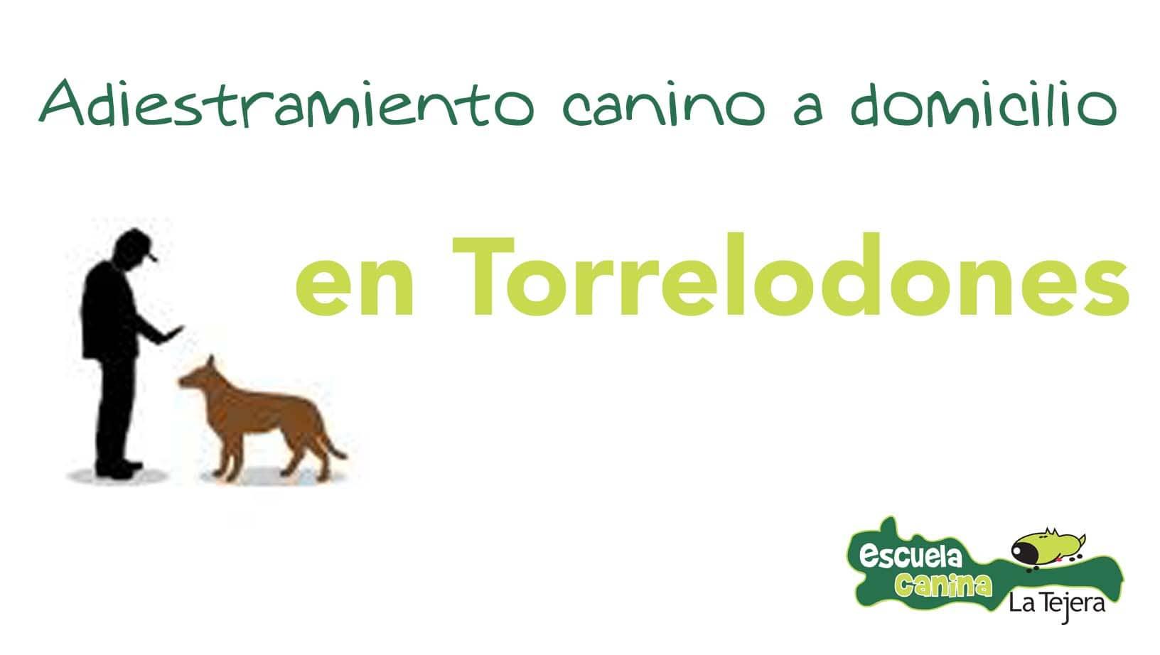adiestramiento_domicilio_torrelodones