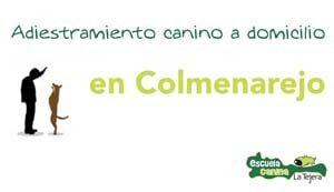 colmenarejo_adiestramiento_domiclio
