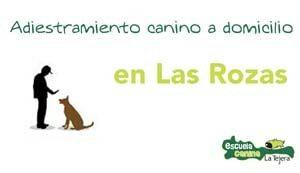 las_rozas_adiestramiento_domiclio