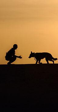 fondo-equipo-escuela-canina-la-tejera