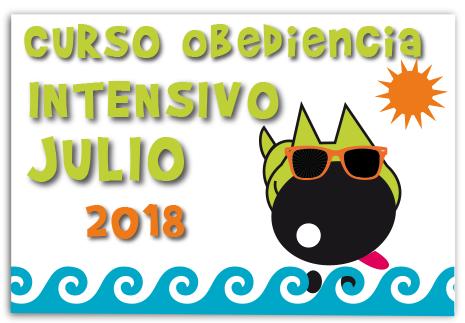 cursos-obediencia-canina-intensivo-julio-2018-la-tejeraP