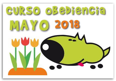 cursos-obediencia-canina-mayo-2018-la-tejera