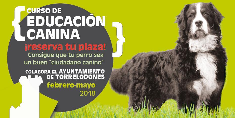 slider-curso_obediencia_canina-febrero-2018-ayto-torrelodones-la-tejera