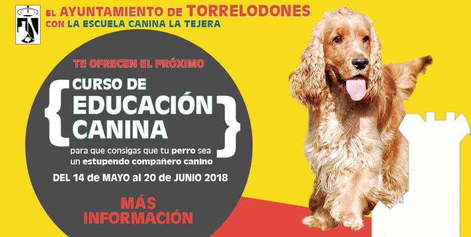 curso-obediencia-canina-mayo-2018-ayuntamiento-torrelodones