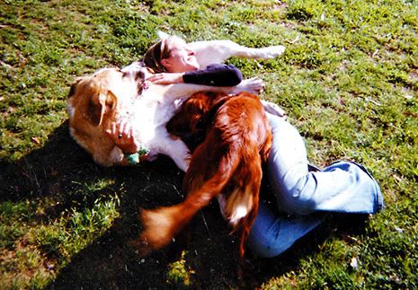 integrandog-jugando-con-perros