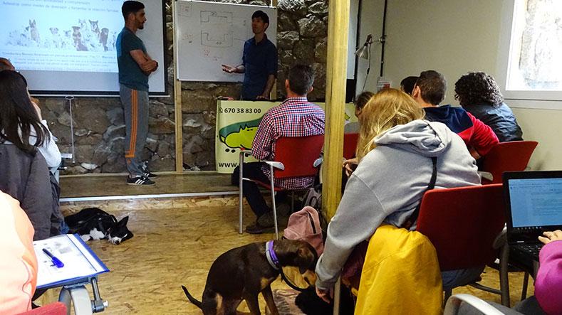 takoda-formacion-escuela-canina-la-tejera